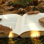 Tatort Bücherregal – Über die Faszination Kriminalroman